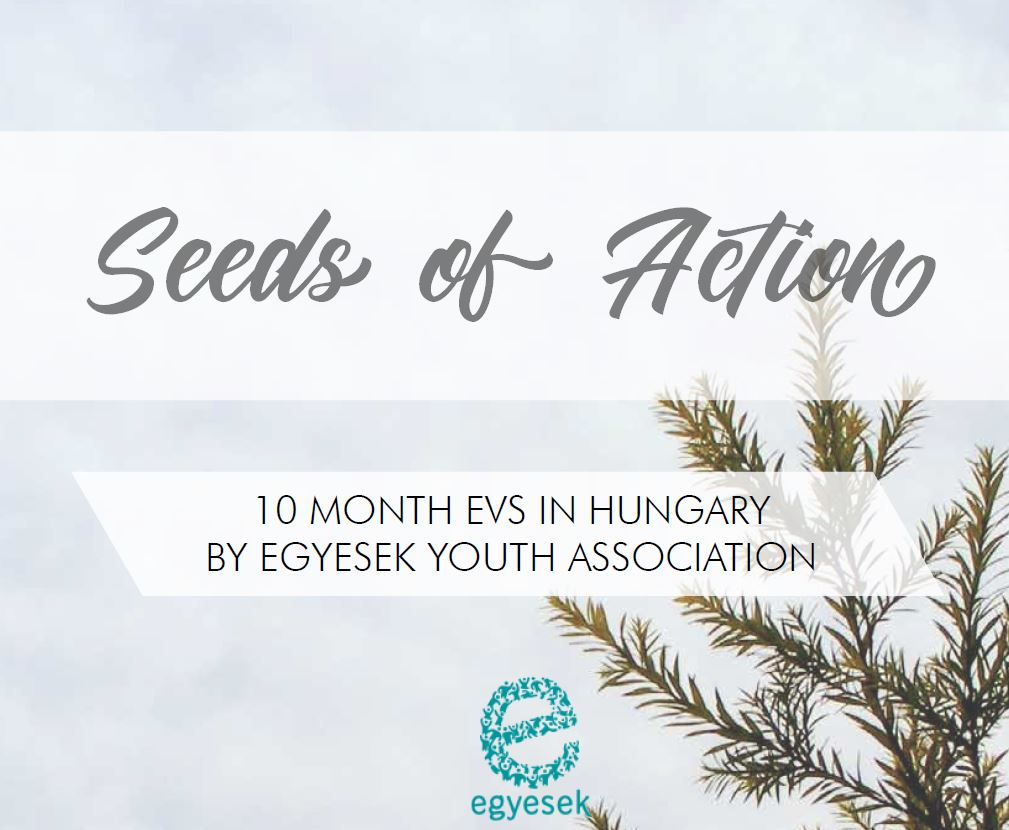 Seeds of Action